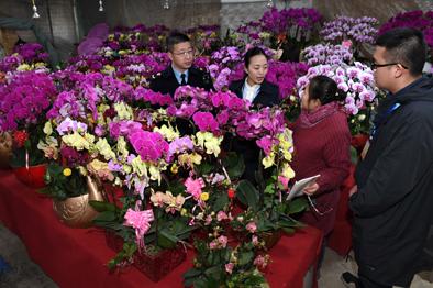 福州嚴查違規收送名貴花卉