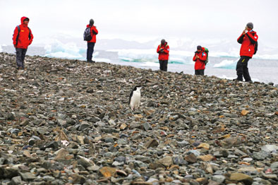 """""""海洋六号""""南极科考队员完成首次登陆考察任务"""