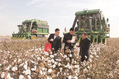 """郵儲銀行:深耕""""三農""""金融服務 助力農業供給側結構性改革"""
