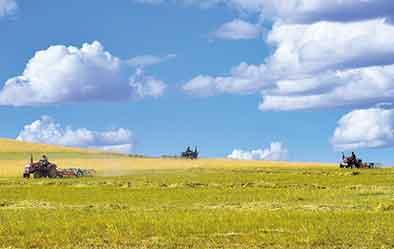 國家草原自然公園還能放牧嗎?